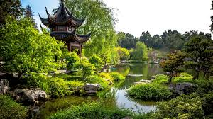 Huntington Botanical Garden by Botanical Tag Wallpapers Chrysanthemum Simferopol Garden