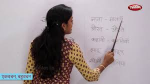 singular and plural words in hindi एकवचन बह वचन