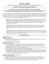 Marketing Director Resume Summary Example Of Executive Resume Sample Sales Manager Resume Sales