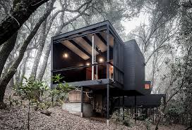Forest House | forest house
