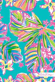 2532 best vera bradley u0026 lilly pulitzer images on pinterest