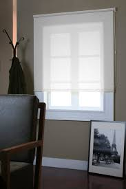 Roller Shade 20 Best Roller Shades Images On Pinterest Roller Shades Rollers