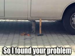 Car Audio Memes - best car audio memes as a result of your cat watching you work on