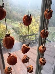 winter cover crop in all garden beds hoshigaki in bedroom window