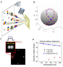 photonic spin controlled multifunctional shared aperture antenna