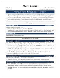 Human Resource Resume Sample Powerful Resume Examples Wwwisabellelancrayus Winning Resumes