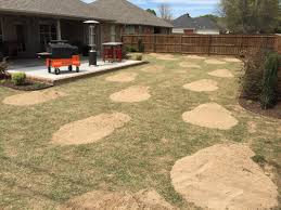 leveling a bermuda lawn the lawn forum