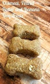 recipes for dog treats oatmeal peanut butter and banana dog treats recipe oatmeal