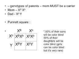 Girls Color Blind Chapter 7 Extending Mendelian Genetics Notes U2013 Part One Ppt