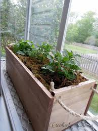 herb planter boxes 34 best planter box images on pinterest gardening plants and home