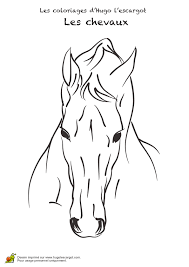 dessin à colorier d u0027un cheval avec un long museau cheval