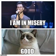 Adam Levine Meme - adam levine grumpy cat imgflip