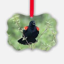 winged blackbird ornaments 1000s of winged blackbird