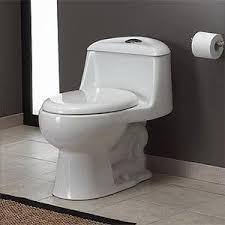 Costco Bidet Water Ridge Toilet Parts
