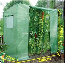 collection small garden greenhouse photos best image libraries