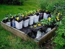 Garden Containers Ideas - self watering garden containers gardening ideas