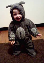 wilfred costume 61 best wilfred images on comedy series things