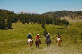 elk mountain ranch the dude ranchers u0027 association