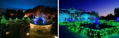 light show in atlanta garden lights holiday nights at the atlanta botanical garden