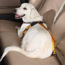 Comfort Flex Dog Harness Covercraft Rr24050 Roadie Dog Harness