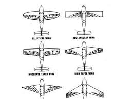 types of wing