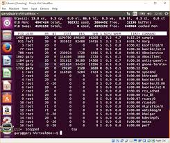 how to use the top command to show running processes