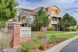 lakewood co apartments for rent realtor com