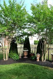 great corner landscaping ideas backyard landscape design