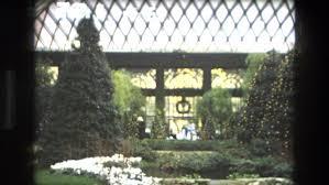 iran 1972 an indoor garden is seen stock footage video 19863907