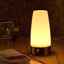 decorative night lights for adults bathroom night lights body motion sensor activated colors led