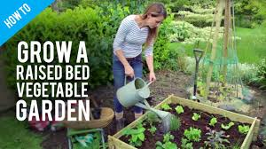 What Type Of Wood Is Best For Raised Garden Beds How To Grow Vegetables In Raised Bed Gardens Youtube