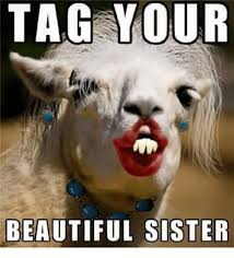 Funny Sister Meme - tag your beautiful sister meme on sizzle
