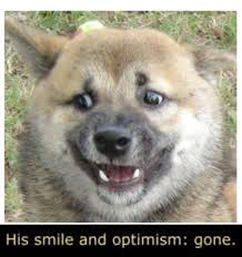 Smile Memes - doggo his smile and optimism gone know your meme