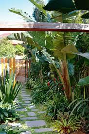Tropical Backyard Ideas Marvellous Small Tropical Backyard Ideas Images Best Inspiration