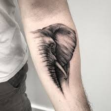 inspirational elephant tattoo design ideas that you will certainly