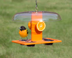 deluxe oriole jelly feeder this sturdy oriole feeder provides a