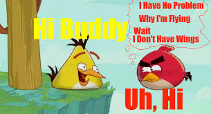 Angry Birds Meme - meme hi buddy angry birds toons chuck time by superandrew418