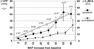 Cpp Map Effects Of Induced Hypertension On Intracranial Pressure And Flow