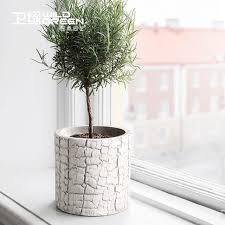 best small white cement succulent plant flower pot table