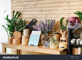 modern planters and pots small business modern flower shop interior stock photo 519555262