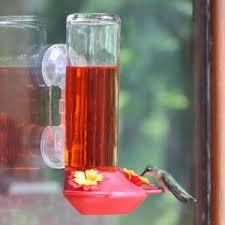 window bird feeders best backyard bird feeders