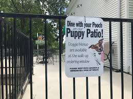 National Patios by Michigan Senate Oks Allowing Dogs On Restaurant Patios