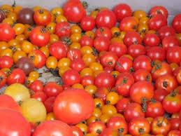 chambre d agriculture du doubs projet sauge solidarités agricoles et urbaines pour des gains
