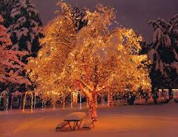 Outdoor Christmas Decorations Woodies by Outdoor Christmas Decorations Ideas For Winter Christmas