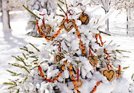bird seed ornaments hanging on outdoor tree wreaths