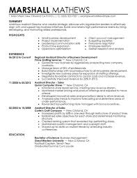 Business Development Resumes Unforgettable Assistant Director Resume Examples To Stand Out