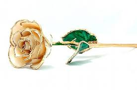 gold dipped gold dipped roses archives henry wilson jewelers syracuse ny