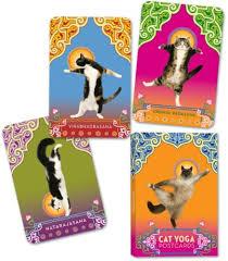 australian shepherd yoga video cat yoga postcards rick tillotson 9780307395429 amazon com books