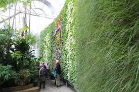 Sydney Botanic Gardens Sydney S Royal Botanic Garden Opens New 17m Exhibition Centre To