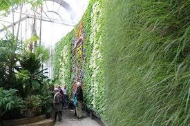 Botanic Garden Sydney Royal Botanic Garden Living Wall Abc News Australian